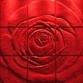 ROSE от Artpole