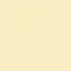Цвет BM 2024-60 Benjamin Moore