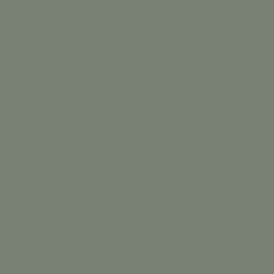 Цвет BM AF-475 Benjamin Moore