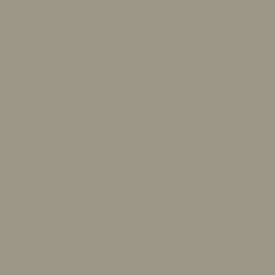 Цвет BM 2141-40 Benjamin Moore
