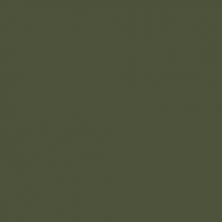 Цвет от Little Greene Olive green RAL 6003